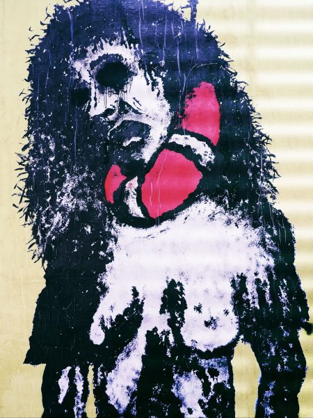 Street Grenoble Art